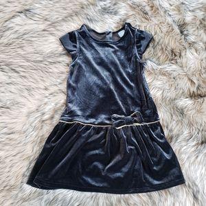 Baby Gap Velvet Dress